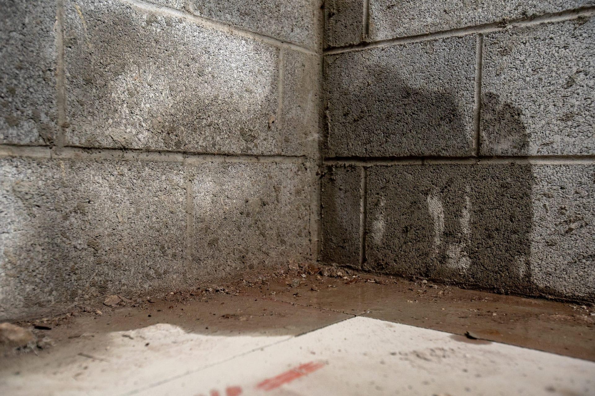Basement Waterproofing | Maintenance & Repair | Nova Construction Pro