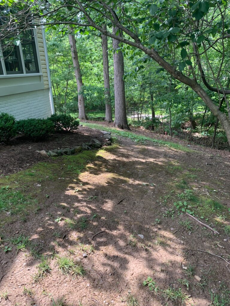 Soil Problems Contractor In Northern Virginia